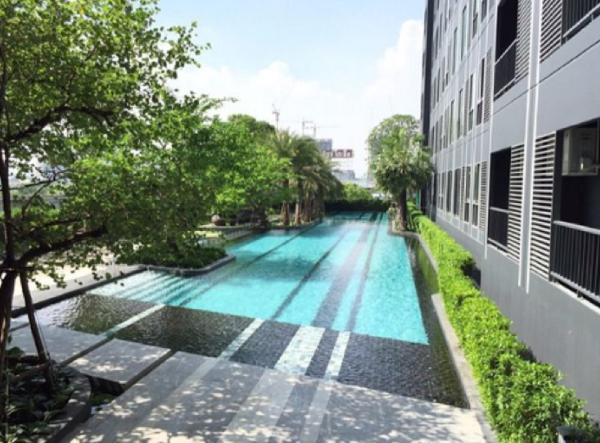 Cozy Condo at Sukhumvit near BTS Bangna Bangkok