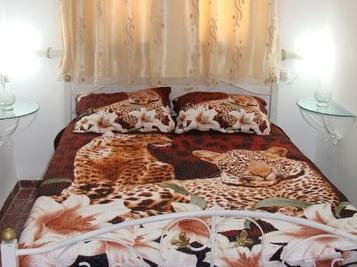 Tamer Guest House,