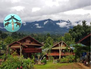 Darling View Point Bungalows - Pai