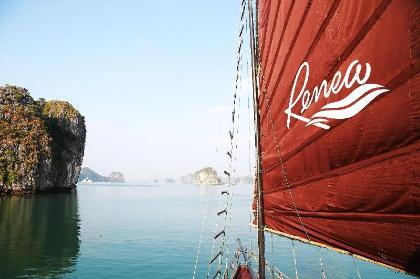 Renea Cruises Hạ Long