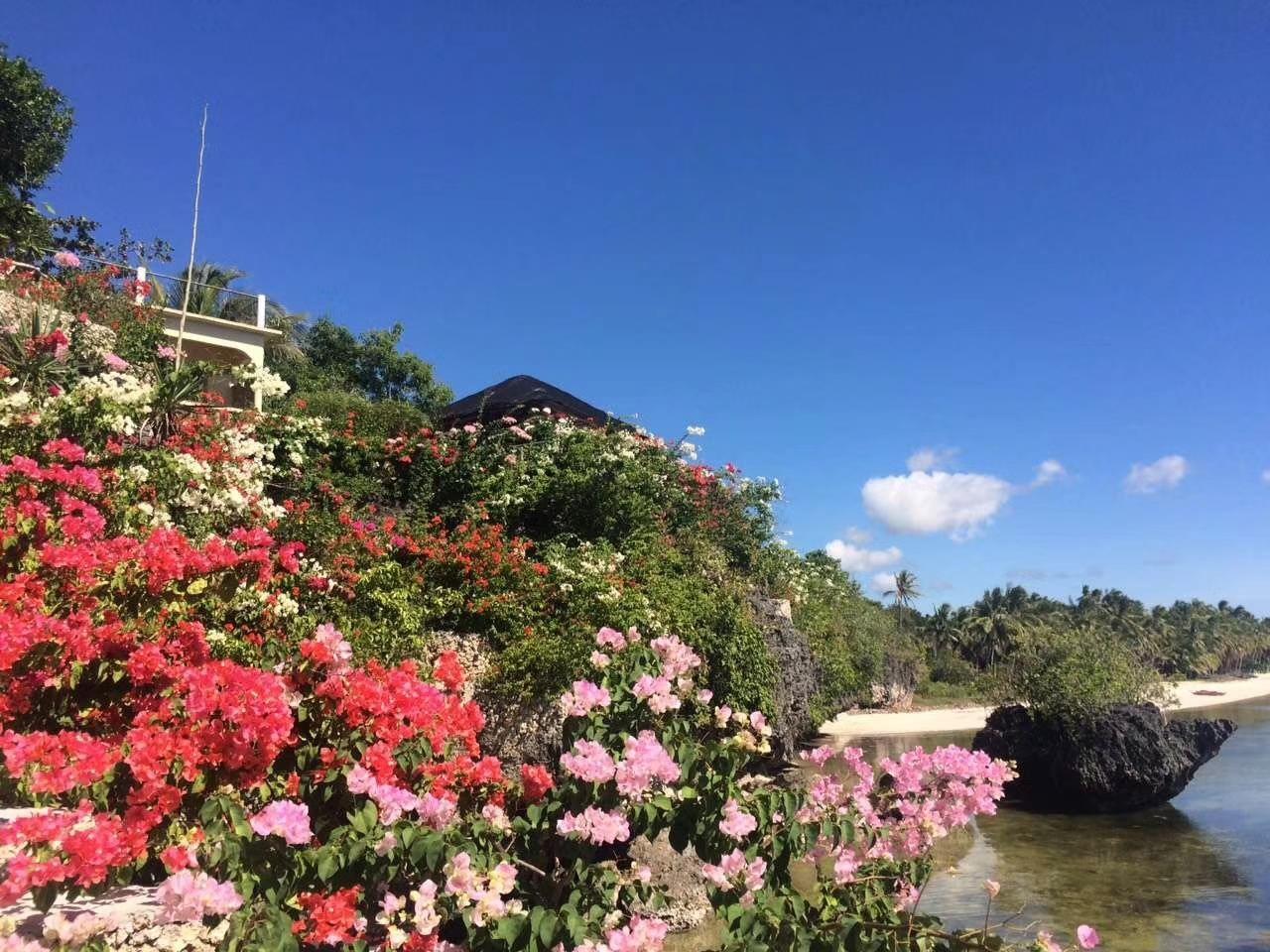 Siquijor Eastern Garan Garden Resort - Siquijor, San Juan