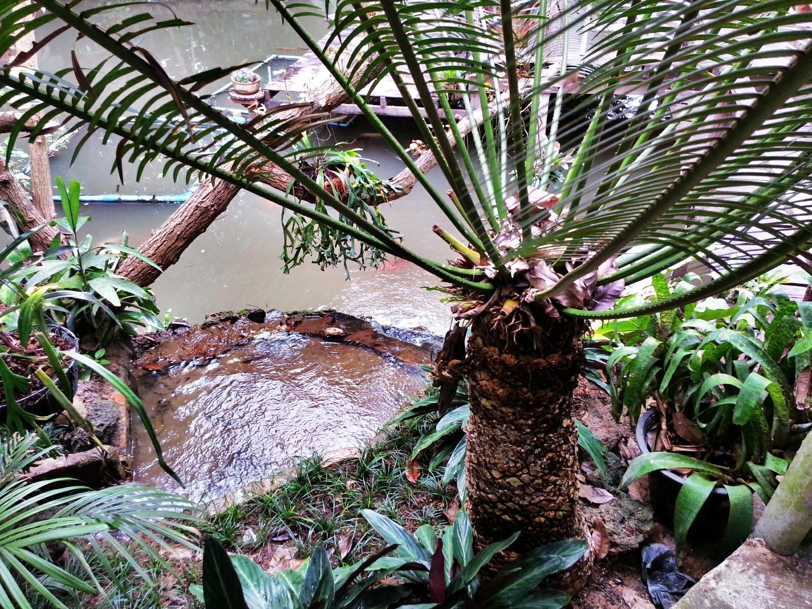 Pallada Bromeliads Resort, Mae Rim
