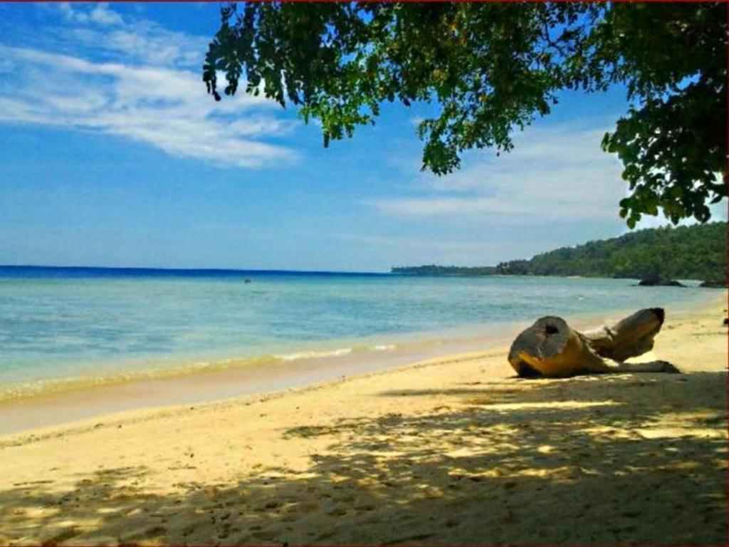 Treasure Island Beach Resort Room Rates