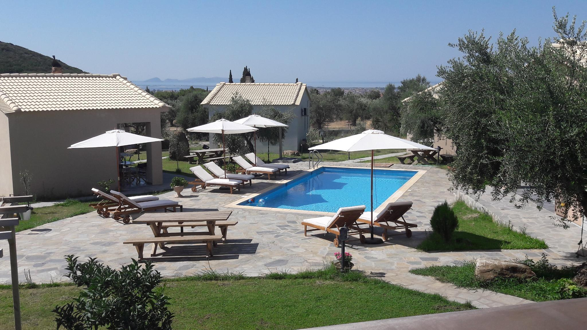 Socrates Organic Village - Wild Olive