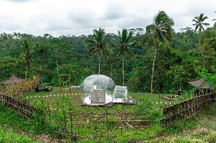 Romantic Bubble Dome Ubud, Gianyar