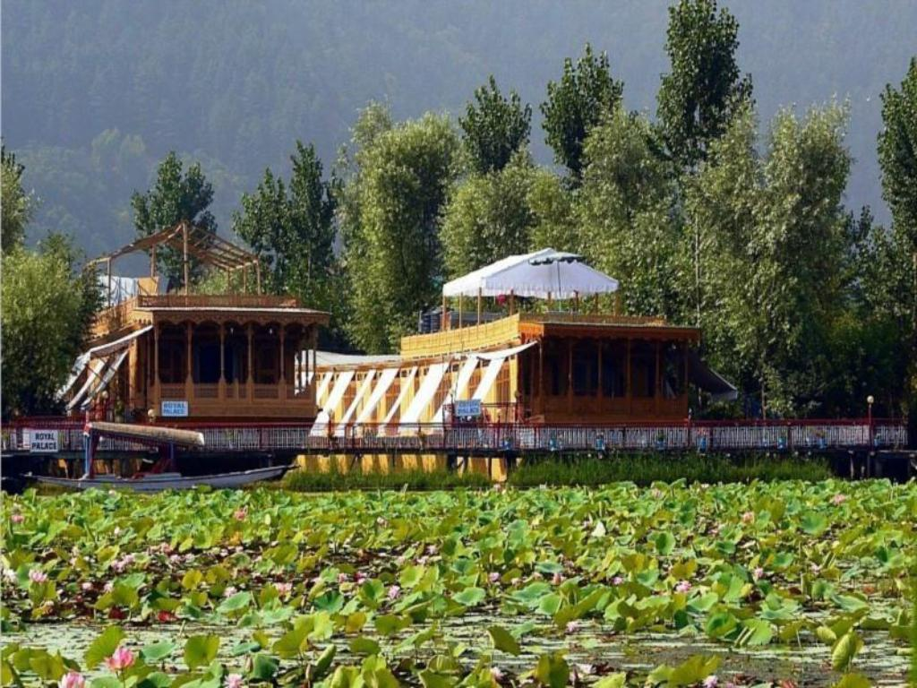best price on royal group of houseboats in srinagar reviews