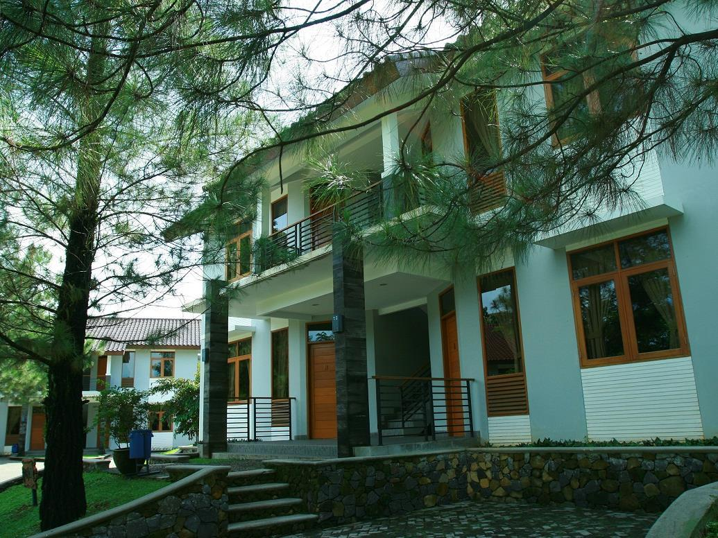 Ole Suites Cottage