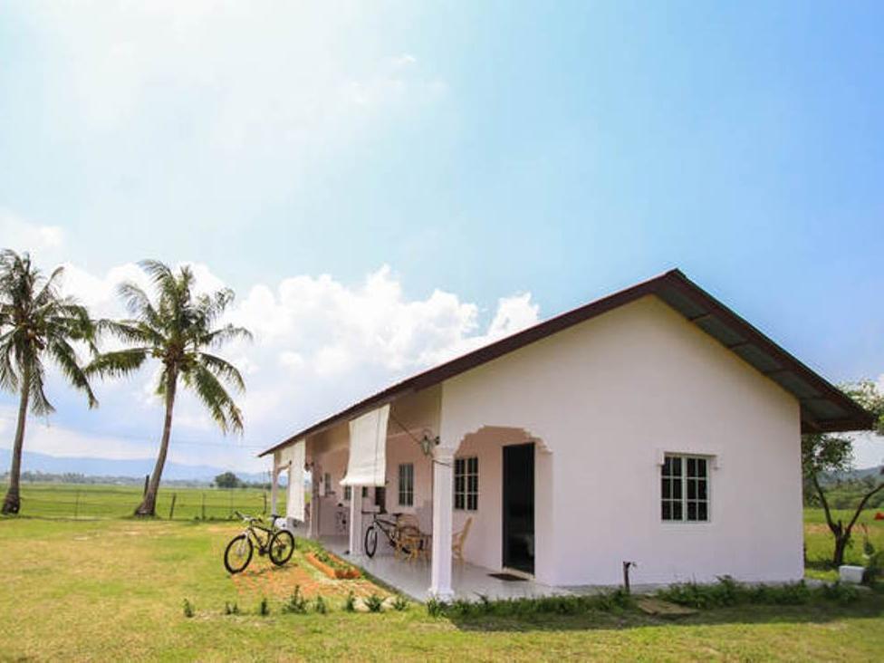 D Bendang Studio, Langkawi
