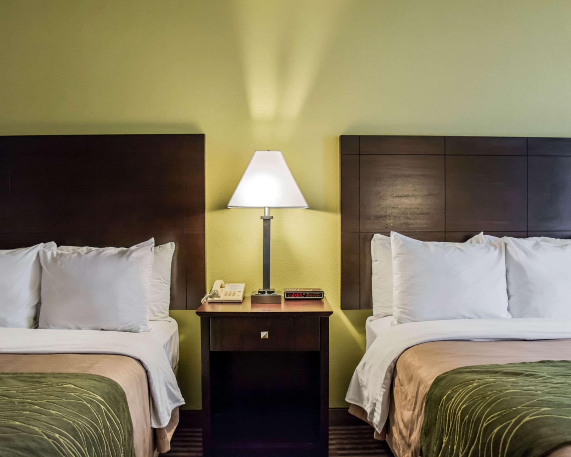Comfort Inn & Suites, Pinellas