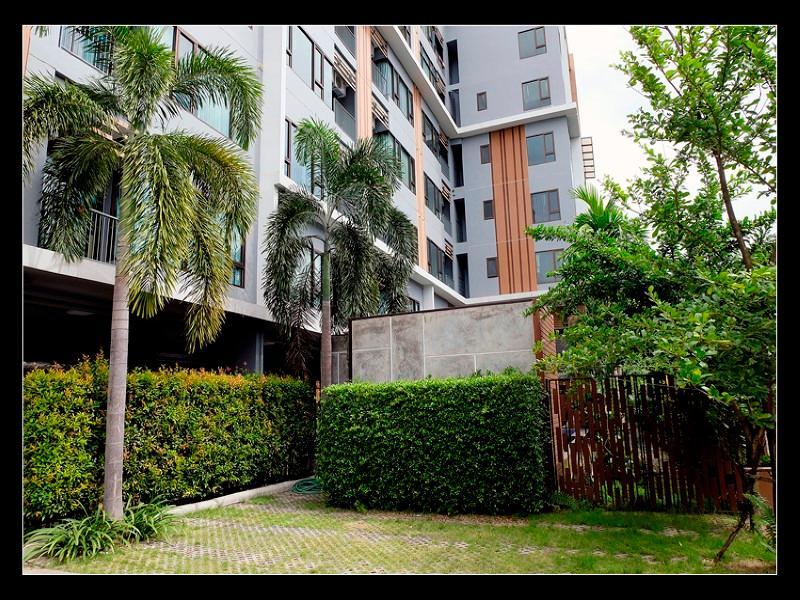 tree boutique resort wiangping- chiangmai