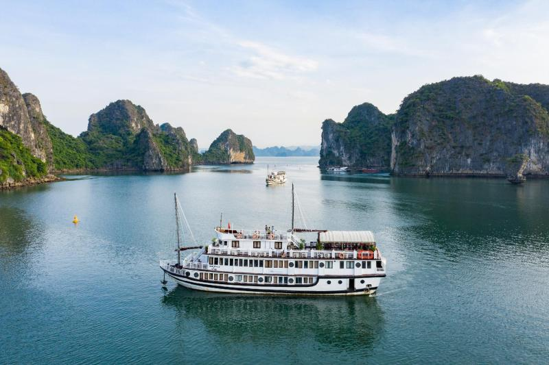 Swan Cruises Hạ Long