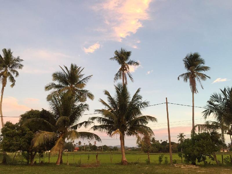 JetROOM 3, Quaint and Quiet Kampung Living