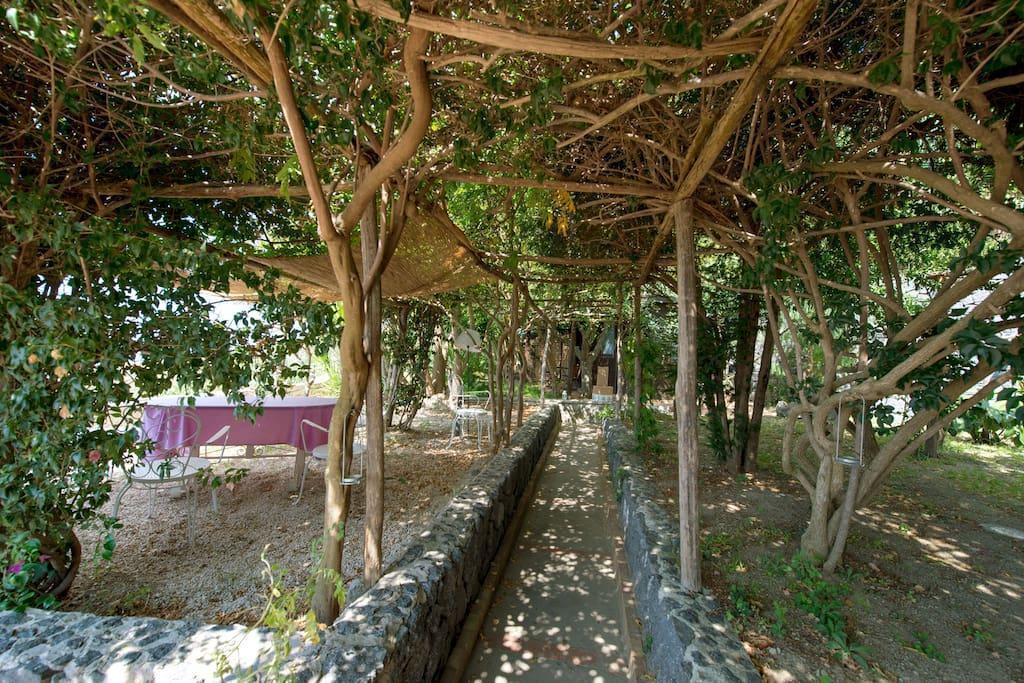 Casa con giardino panoramicissimo