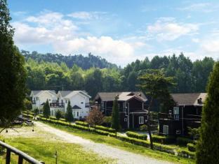 /resort-feliz/hotel/pyeongchang-gun-kr.html?asq=jGXBHFvRg5Z51Emf%2fbXG4w%3d%3d