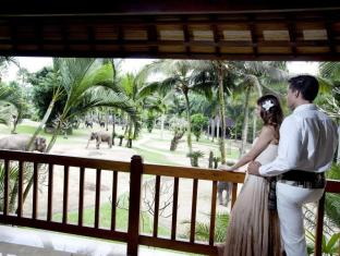 Elephant Safari Park Lodge Hotel Bali - Honeymoon