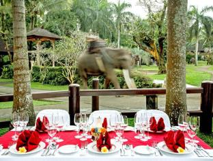 Elephant Safari Park Lodge Hotel Bali - Outdoor Dining