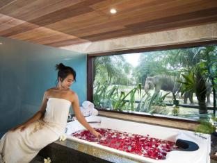 Elephant Safari Park Lodge Hotel Bali - Safari Wellness Spa