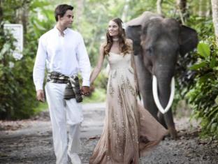 Elephant Safari Park Lodge Hotel Bali - Tuin