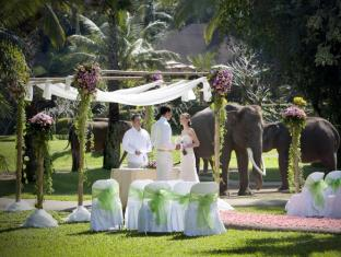 Elephant Safari Park Lodge Hotel Bali - Park Wedding