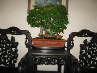 Hotel Mingood Penang - Bonsai Plant Decoration