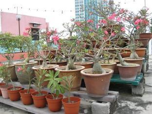 Hotel Mingood Penang - Desert Roses