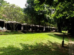 /buritara-resort-spa/hotel/sai-yok-kanchanaburi-th.html?asq=jGXBHFvRg5Z51Emf%2fbXG4w%3d%3d