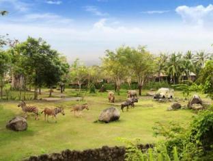 Mara River Safari Lodge Hotel Bali - View