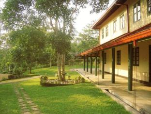 Falcy Estate Guesthouse and Plantation