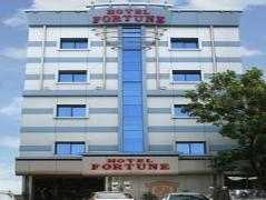 Hotel Fortune India
