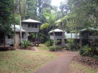 /ferntree-rainforest-lodge/hotel/daintree-au.html?asq=jGXBHFvRg5Z51Emf%2fbXG4w%3d%3d