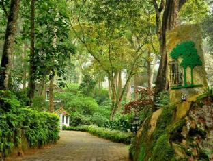 /the-tall-trees-munnar/hotel/munnar-in.html?asq=jGXBHFvRg5Z51Emf%2fbXG4w%3d%3d