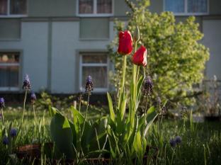 Jagello Hotel Budapest - garden