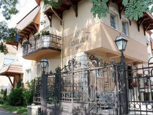 /es-es/levay-villa-hotel/hotel/miskolc-hu.html?asq=jGXBHFvRg5Z51Emf%2fbXG4w%3d%3d