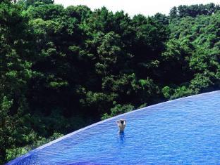 /sv-se/hidden-cliff-hotel-nature/hotel/jeju-island-kr.html?asq=vrkGgIUsL%2bbahMd1T3QaFc8vtOD6pz9C2Mlrix6aGww%3d