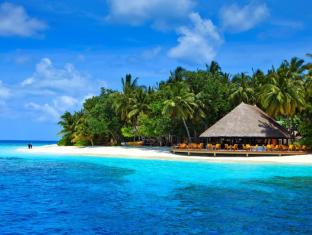 /nb-no/angsana-ihuru-resort/hotel/maldives-islands-mv.html?asq=jGXBHFvRg5Z51Emf%2fbXG4w%3d%3d