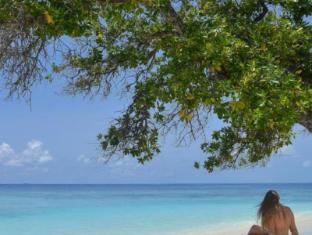 Bandos Maldives Maldives Islands - Beach