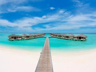 /paradise-island-resort-spa/hotel/maldives-islands-mv.html?asq=jGXBHFvRg5Z51Emf%2fbXG4w%3d%3d