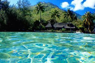 /poerani-moorea/hotel/moorea-island-pf.html?asq=jGXBHFvRg5Z51Emf%2fbXG4w%3d%3d