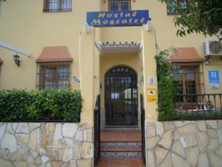 /hostal-moscatel/hotel/malaga-es.html?asq=vrkGgIUsL%2bbahMd1T3QaFc8vtOD6pz9C2Mlrix6aGww%3d