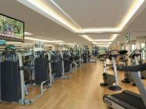 The Excelsior Hong Kong: fitness room