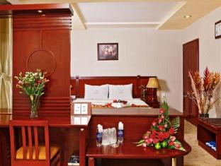Thien Thao Hotel Ho Chi Minh City - Guest Room