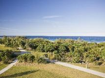 Mantra On Salt Beach: view