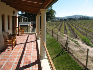 LovanE Boutique Wine Estate and Guest House Stellenbosch - Parveke/Terassi