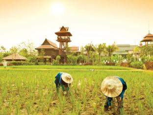 Siripanna Villa Resort & Spa Chiangmai Chiang Mai - Rice Planting