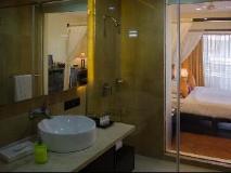 Citrus Goa Hotel: bathroom