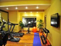 Citrus Goa Hotel: fitness room