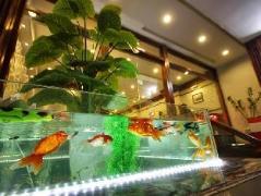 Icon 36 Hotel & Residence   Vietnam Budget Hotels