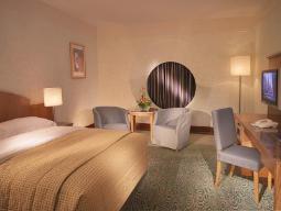 Deluxe Zimmer in Halle C