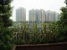 Noah's Ark Resort: view