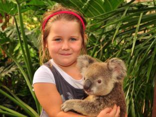 Hamilton Island Palm Bungalows Whitsunday Islands - Breakfast with Koalas at the Wildlife Park